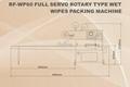 RF-WP60 Full Servo Rotary Type Wet Wipes Packing Machine 4