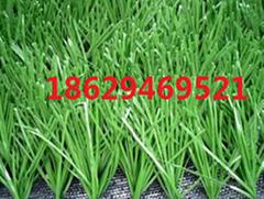 人造草地坪