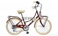 City Bicycle, Commuter Bike by JIS