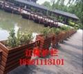 江苏常州河道沿口绿化花箱