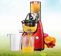 Household Juice extractor Kitchen whole fruit slow juicer 1