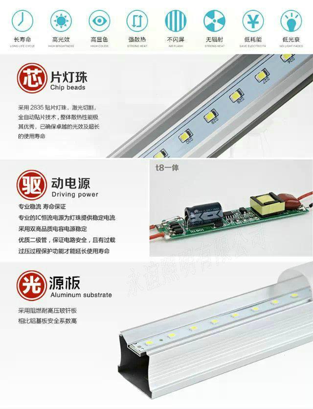 T5 T8 一體燈管 4