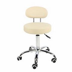 Low Back Seat Swivel PU Leather Adjustable Salon Chair