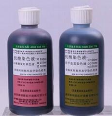 抗酸染色液