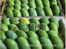 Fresh Quality Mango