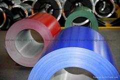 Selling Prepainted Steel Coils