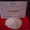 Dicalcium Phosphate 2