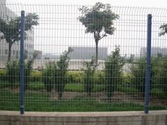 河北現貨庫存1.8*3.0m雙邊絲護欄網
