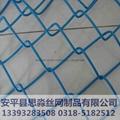 河北4.0mmPVC镀锌丝高防锈勾花网 4