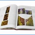 Art Books Printing