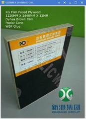 Dynea Brown Film WBP Glue Film Faced Plywood Original from Linyi City