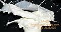 強力高浸漬制品氯丁膠乳LA-410 1