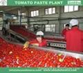 tomato paste machine 1