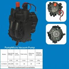 Micro Vacuum Pump