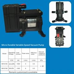 Micro Durable Variable Speed Vacuum Pump