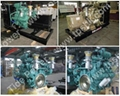 Doosan PSI gas biogas generator set