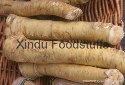 dried garlic Dehydrated Garlic 1