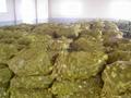 dried garlic Dehydrated Garlic 4