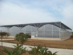Multi Span Plastic Greenhouse for Agriculture