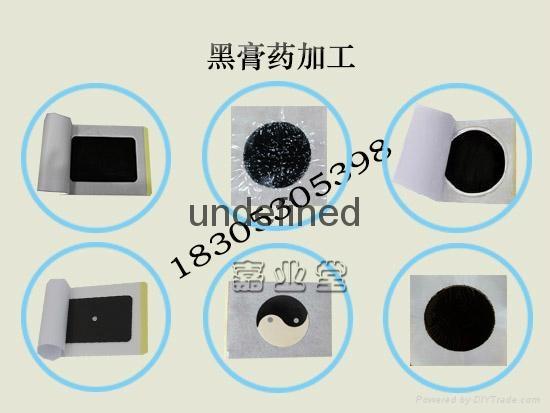 Shandong Zhushi Pharmaceutical Group OEM  1