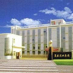 宁夏夏盛实业集团有限公司