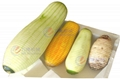 瓜果菠萝芋头冬木瓜削皮机 5