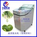 小型变频式蔬菜脱水机械