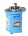 CMK1008* Series Hydraulic Oil Gear Motor