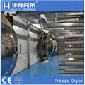 Industrial Food Fruit Vegetable Drying Lyophilizer Vacuum