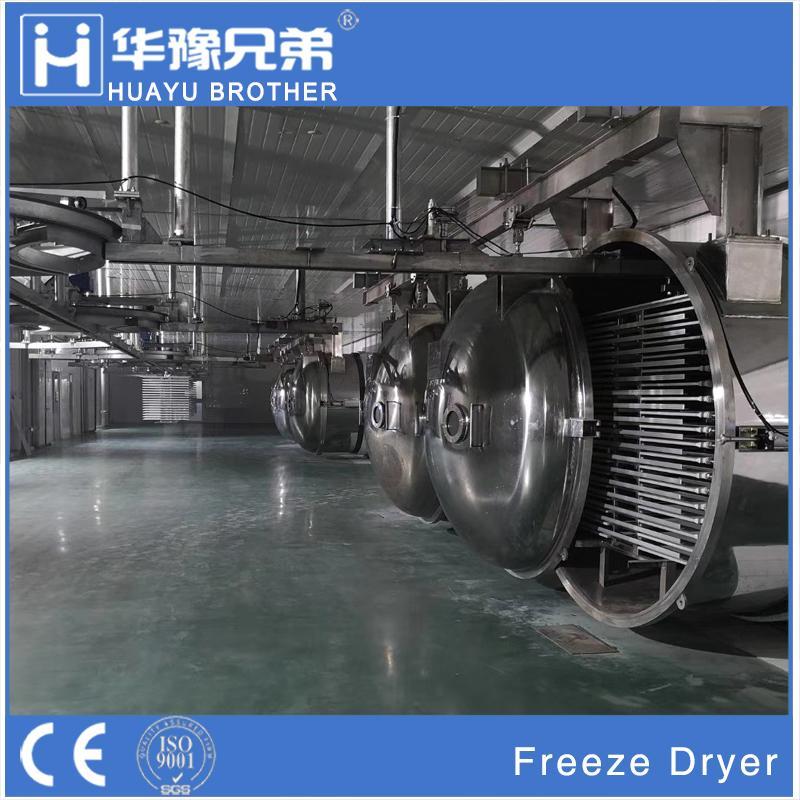 Hot Sale Industrial Fruit Dryer Price Machine Vegetable Food Vacuum Freeze Dryer 2
