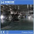 Industrial Food Fruit Vegetable Drying Lyophilizer Vacuum Freeze Dryer Machine 2