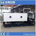 Fdl Vacuum Lyophilizer Machine Freeze