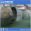 Industrial Fruit Drying Equipment Vacuum