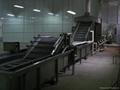 平板式速冻隧道不锈钢304输送