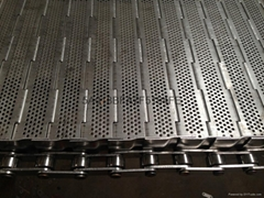 Stainless steel punching chain plate
