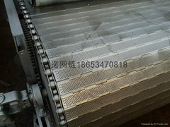Stainless steel chain plate