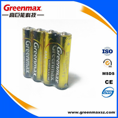 Chinese importers lr03 1.5v aaa alkaline dry battery for toys