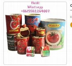 price canned easy open tomato paste tin 28-30% brix 210g