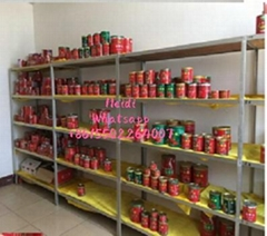 canned xinjiang tomato paste brix 70g 22-24% brix with easy open