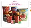 canned easy open tomato paste tin 28-30%
