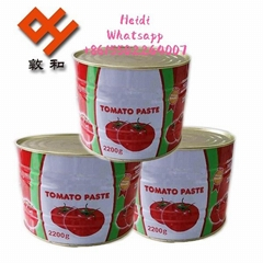 canned tomato paste 2200g with 2021 crop 28-30% birx