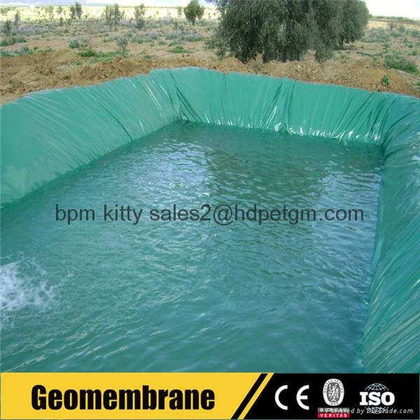 Hdpe Sheet Geomembran Fish Farm Pond Green Color Plastic Liner Bpmgm
