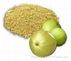 Spray dried Fruits and Veg powder