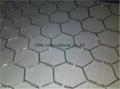 PVC Coated Ga  anized Hexagonal Wire