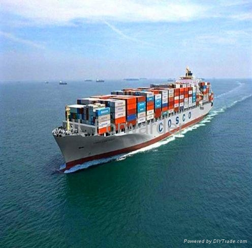 Sea Freight FCL  LCL Shipping From Shenzhen To The Port Of Miami 1