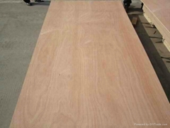 Best price commercial plywood furniture plywood