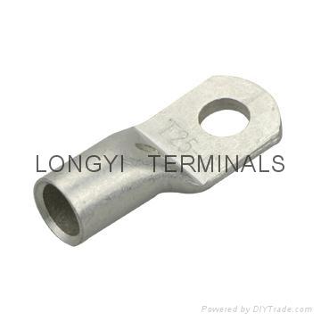 T25平方铜端子龙溢 1