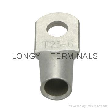 T25平方铜端子龙溢 3