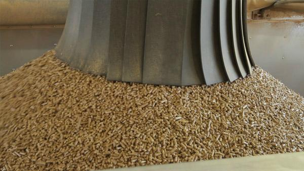 quality wood pellets for sale 2