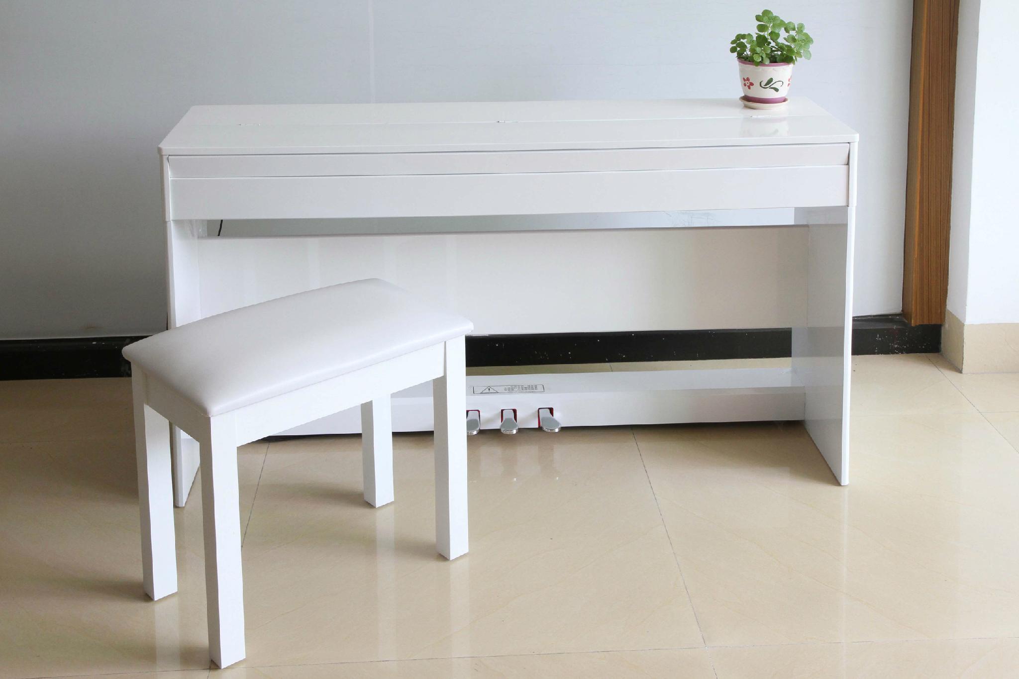 莱恩电钢琴 1